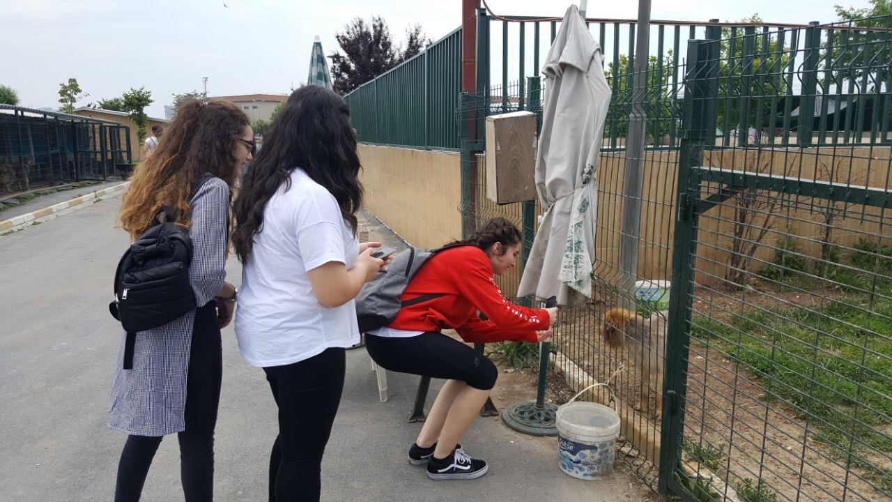 Öğrencilerimiz Bakırköy Hayvan Barınağı'nı Ziyaret Etti