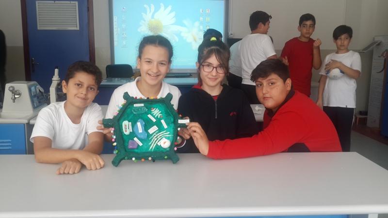 6.Sınıf Öğrencilerimiz Laboratuvarda  Hücre Modeli Tasarladı